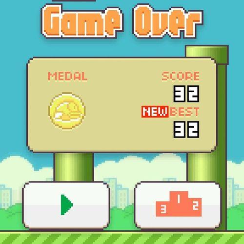 my new score Flappy Bird