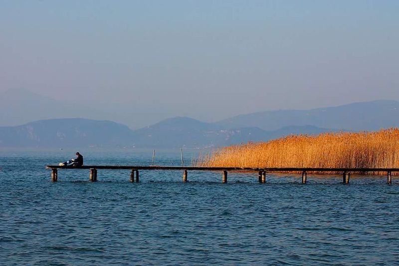 -peace- Gardalake Nature_collection Sunny Day Bluewater Italianlandscape Person Peace Relaxing Beautiful Showcase April Blue Wave Taking Pictures Taking Photos Canonphotography Solitude Hello World Peace And Quiet Quiet Moments Italy Colors Light Colors Blue Yellow Flower Connected With Nature Contrast