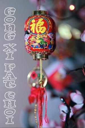 Taking Photos Eye4photography  Chinese New Year 2013