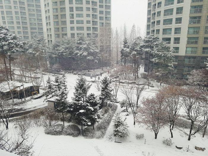 Snow ❄ White Winter Architecture Built Structure City Backgrounds