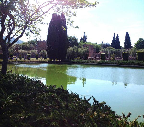 Landscape Vegetation Green Guided Tour Tourism Landscape Italy Parque  Park Eau Water Soleil Lac Tree Lake Villa D'Adriana Italie