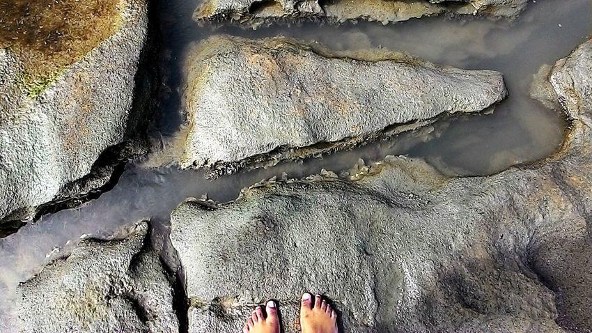 NATURE Rochas Piscinasnaturais Pernambuco Praias Paradise Nature
