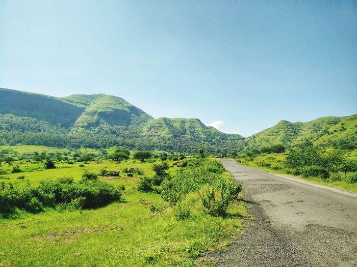 So calm! Traveling Travel Hills Greenery Serene Roadtrip Road