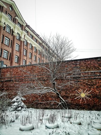 first day of winter Outdoors Sky No People Day Architecture Building Exterior Nature Tree Scenics Tranquil Scene Snowing Snow Winter December2017 Saint Petersburg St Petersburg