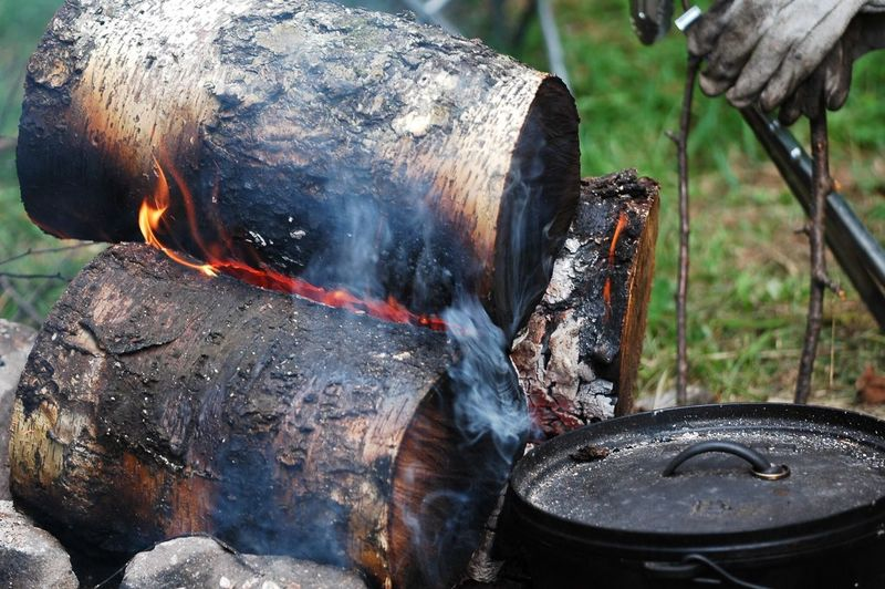 Close-up of burning firewood at forest