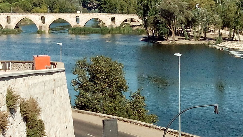 Zamora old travel Architecture Beauty In Nature Bridge - Man Made Structure Day Nature No People Outdoors Scenics Travel Destinations Tree Water Zamora Zamora, Spain