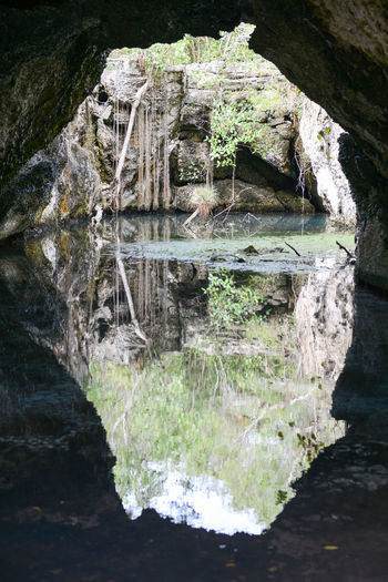 Cuba Beauty In Nature Close-up Day Girón Lake Nature No People Outdoors Reflection Rock - Object Tree Water Waterfront