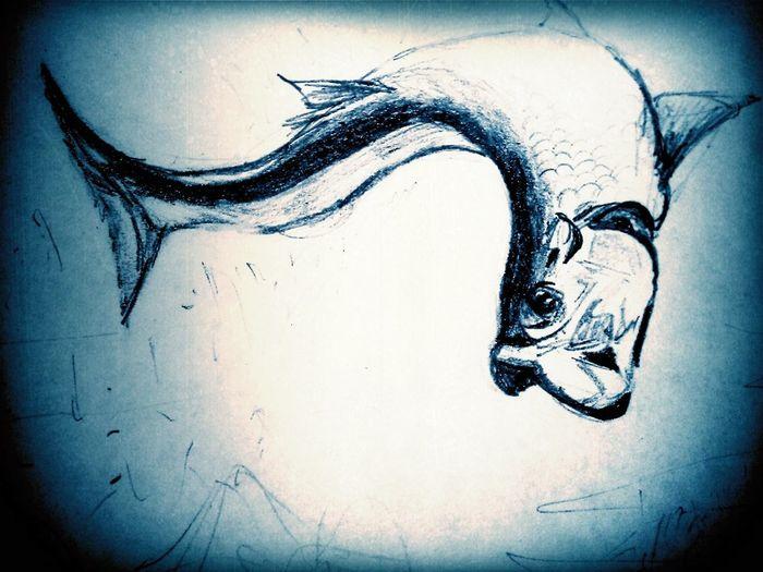 Tarpon Drawing