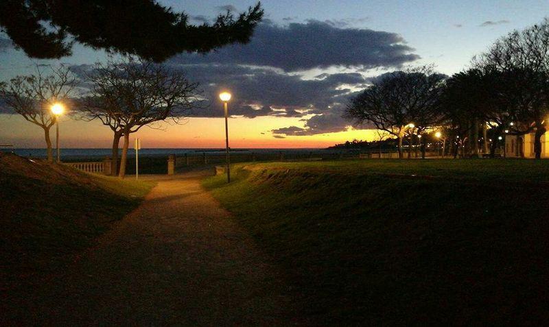 Beach Water Tree Sky Day Night Vilanova I La Geltru