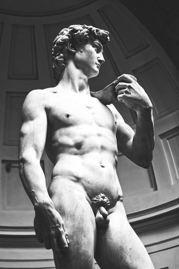 Statue of David Sculpture David Statue Of David Shadows & Lights Black And White Monochrome Shadows Contrast Italy Florence Muscular Build Shirtless Men Beautiful People Strength Athlete Flexing Muscles Body Building Human Muscle Torso Chest Masculinity Statue Sculpture Bicep Abdominal Muscle Capture Tomorrow