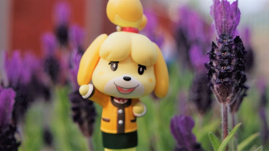 Close-up of toy on purple flowering plants