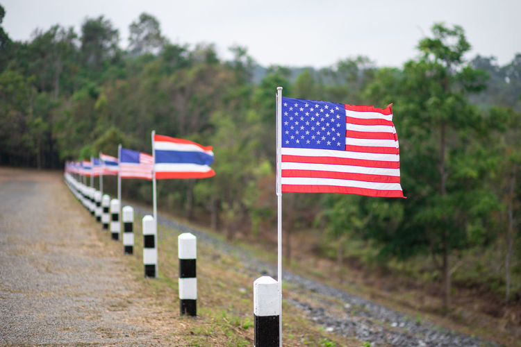 Flag Patriotism Striped Day Shape Plant No People Pride Symbol Nature Focus On Foreground Tree Emotion Star Shape Outdoors Symbolism Red National Icon Independence USA America Thailand