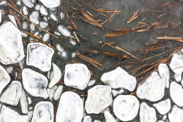 High angle view of stones on snow