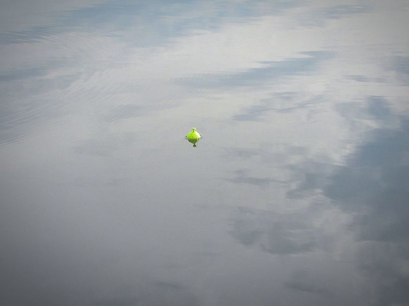 Fishing Bobbers Bobber Floating On Water Fishing Cone Cork Bright Yellow Neon Color Neon Yellow Fishing Equipment Float Floating In Water Outdoors Minimalism Leisure Activity High Angle View Water Nature Adventure Water Sports Water Activities One Single Object Floating Floating Away Bobbing