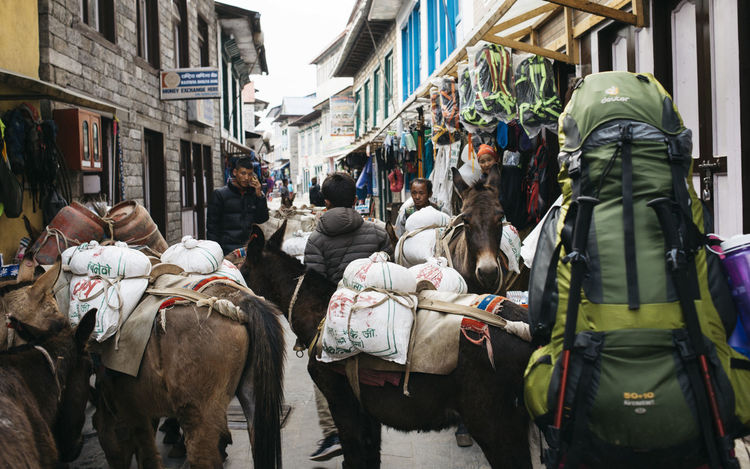 Trekking out of Lukla. Rural Shops The Week on EyeEm Trekking Architecture Backpack Building Exterior Built Structure City Crowd Domestic Domestic Animals Donkey Group Of People Lifestyles Livestock Mammal Men Outdoors People Pets Real People Rear View Street Women