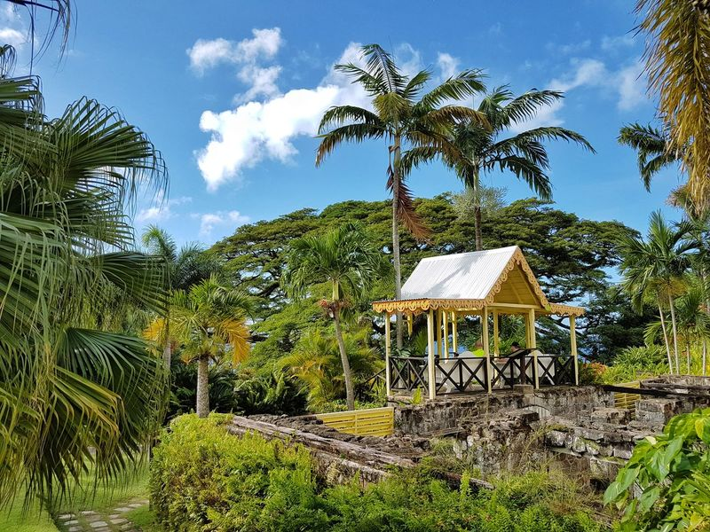EyeEmNewHere St. Kitts Architecture Beauty In Nature Building Exterior Built Structure Caribbean Day Growth Nature No People Outdoors Palm Tree Romney Manor Sky Tree