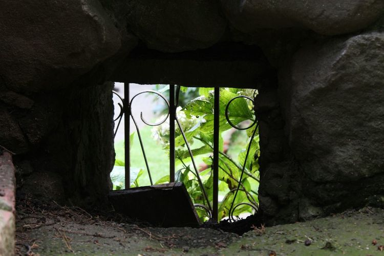 Across The Window Desierto De Los Leones.