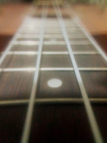 Ukulove! Instrumentos Instruments Blurred Selective Focus