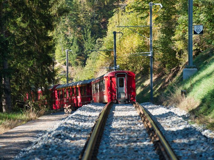 Abwärts Transportation Rail Transportation Railroad Track Mode Of Transportation Tree Track Train Train - Vehicle Public Transportation No People Nature Travel Land Vehicle The Way Forward Red Outdoors Journey Motion Railroad Car A New Beginning Autumn Mood It's About The Journey 2018 In One Photograph The Great Outdoors - 2019 EyeEm Awards The Traveler - 2019 EyeEm Awards