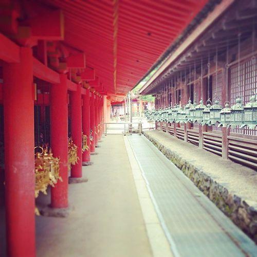 Nara in Japan