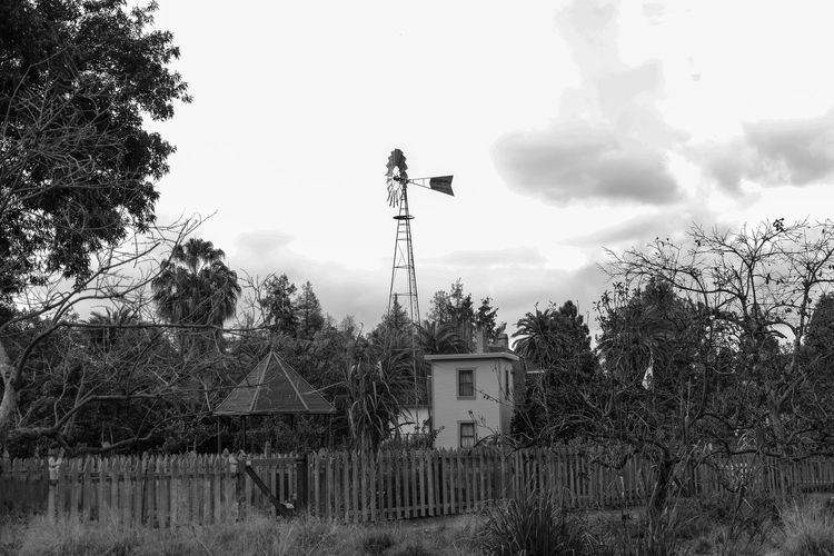 Shack and Mill Cloud - Sky Tree No People Built Structure Sky Building Exterior Outdoors Day Eyemphotography Freshness Available Light Straightfromcamera Fujifilm_xseries Old Building  1920s Plant Backgrounds Retro Blackandwhite