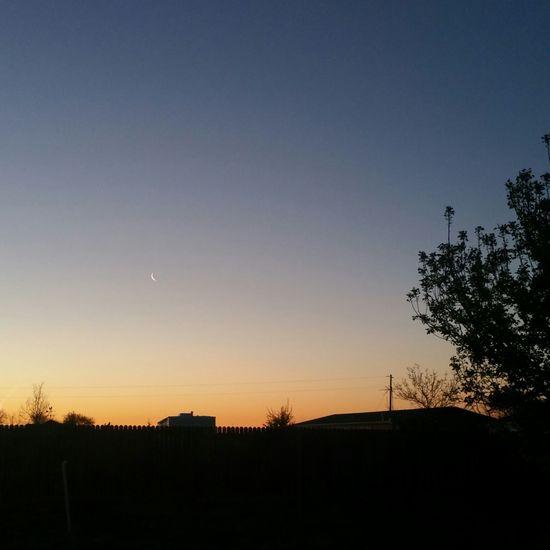 Early Morning Glow Crescent Moon Peaceful Colors Sunrise Sunrise_Collection Sunrise Silhouette Sunriseporn Sunrise Photography