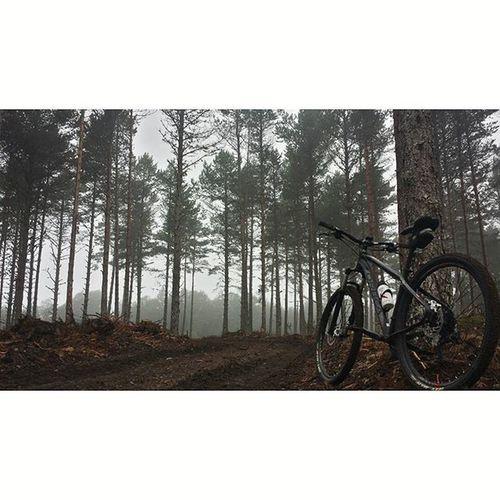 SerradoEixe BTT Mountain Mountainbike Niebla Galizacalidade Airefresco Nature Orbea Orbeabicycles Orbeaterritory 🌲🌲🌲🌲🌲🌲