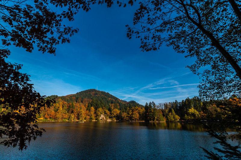 herbstlicher Bergsee in Bad Säckingen Autumn Autumn Colors Bad Säckingen Bergsee Black Forest Herbst Lake Landscape Nature No People Outdoors Scenics Schwarzwald Sky Sunset Tree Water