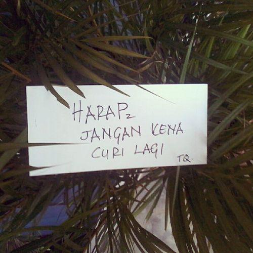 so i found this in front og the pejabat ktp..haha..DUNIA6 Warning Jomrembatt
