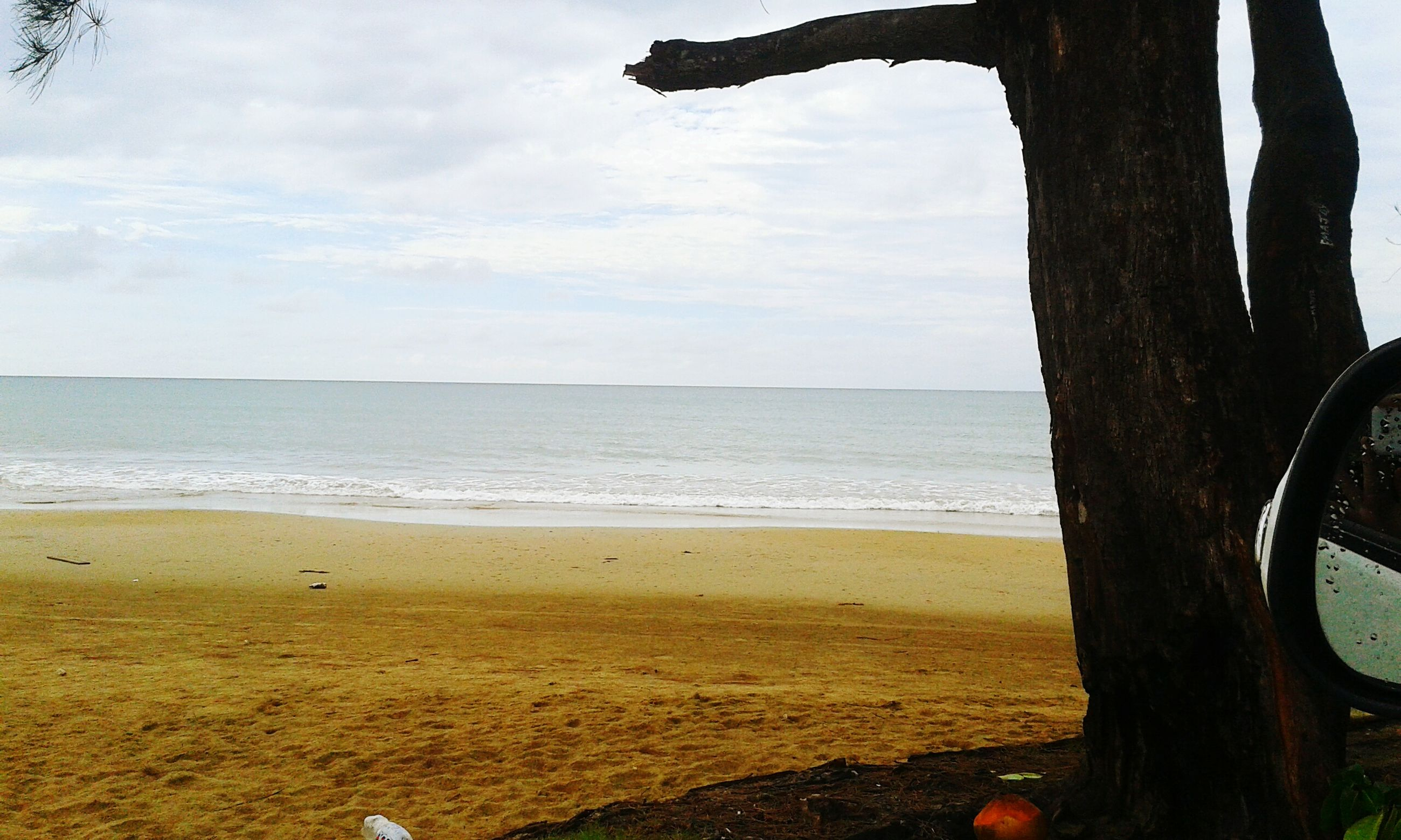 beach, sea, sky, shore, horizon over water, tranquility, water, tranquil scene, scenics, sand, beauty in nature, nature, tree, tree trunk, cloud - sky, idyllic, one person, cloud, coastline, outdoors
