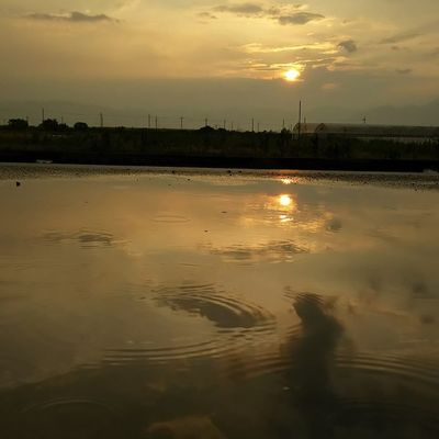 今日もおつかれさまでした。 空 Sky イマソラ ダレカニミセタイソラ Team_jp_ Japan Instagood 景色 Scenery 自然 Nature Icu_japan Ig_japan Ig_nihon Jp_gallery Japan_focus Sunset 夕方 夕陽 みずたまり 水面 Sunsets