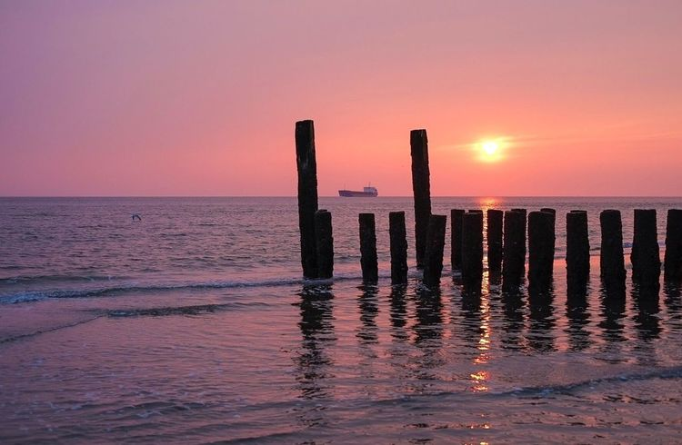 Magic boat Sea Sunset Horizon Over Water Water Tranquility Beauty In Nature Scenics Nature Tranquil Scene Wooden Post Sun Sky Outdoors No People Beach Day