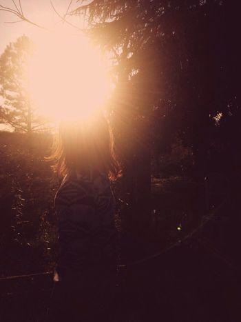 Native dreams. Sunflare Warm Silhouette Hello World