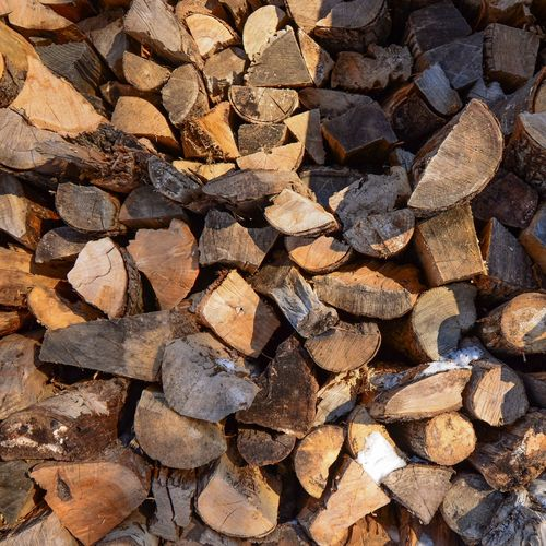 Walking in the woods Log Firewood Timber Large Group Of Objects Full Frame Backgrounds Abundance Wood Lumber Industry Tree Stack Nature Forest Deforestation Wood - Material Fuel And Power Generation Heap No People Environmental Issues Textured  Woodpile Outdoors Chopped