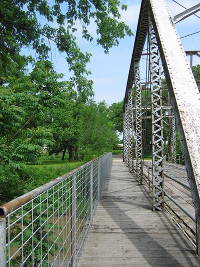 Architecture Bridge - Man Made Structure Built Structure Day Footbridge Nature No People Outdoors Railing Sky The Way Forward Tree