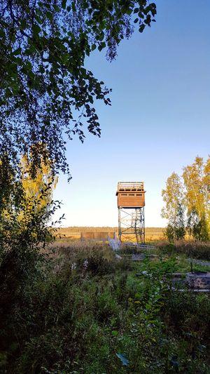 bird tower in