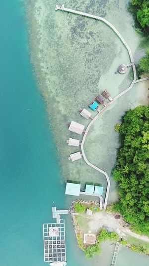 Why you look so beautiful Beachphotography Beach Rajaampat Water Tree Aerial View High Angle View Architecture
