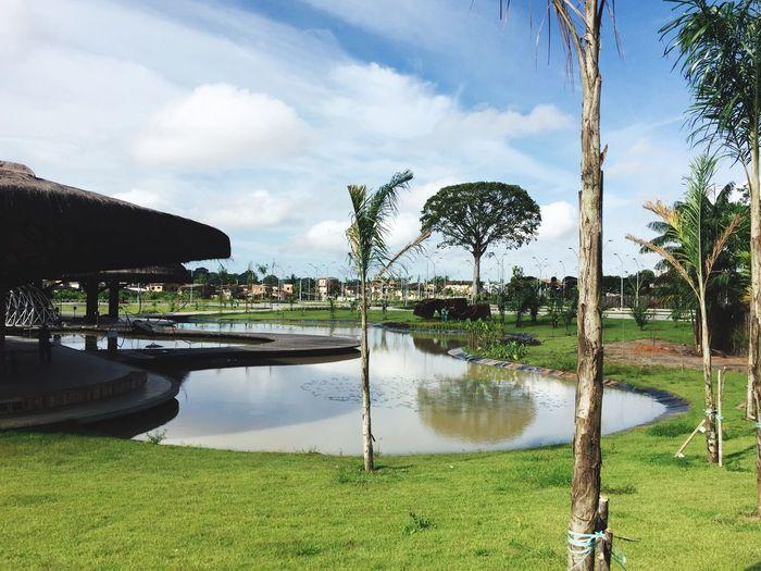 Utinga Belém parque First Eyeem Photo