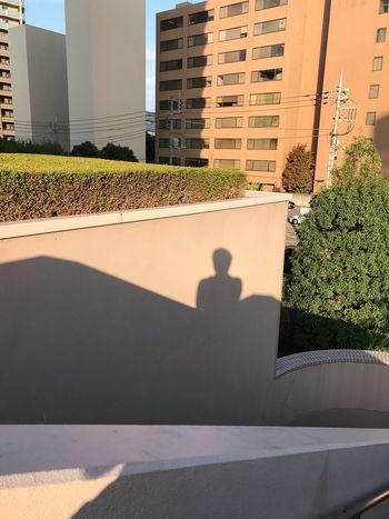 """某事務所を訪ねて街へ出る、、""""Light & Shadows"""" Built Structure Architecture Building Exterior Sunlight Shadow City Nature Building Outdoors Office Building Exterior Residential District Day Lifestyles One Person"""