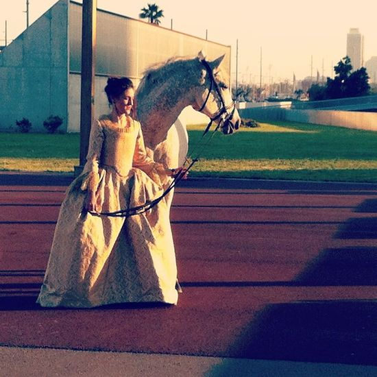 Medieval Lady & Horse in Concret