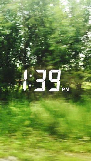 🌃🌳🌲 Blurred Motion Nature Speed Outdoors Tree No People Number Day Grass First Eyeem Photo