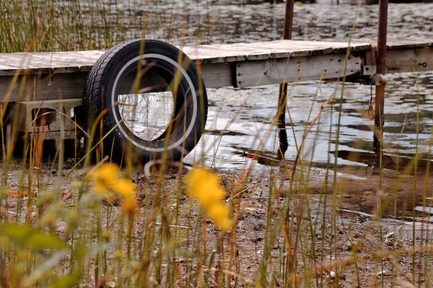 Day Focus On Background Focus On Foreground Grass Growing No People Old Outdoors Pier Plant Rusty Shore Tire Water Wood