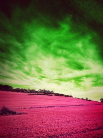 Colors Pink Eye4photography  Itsapinkworld