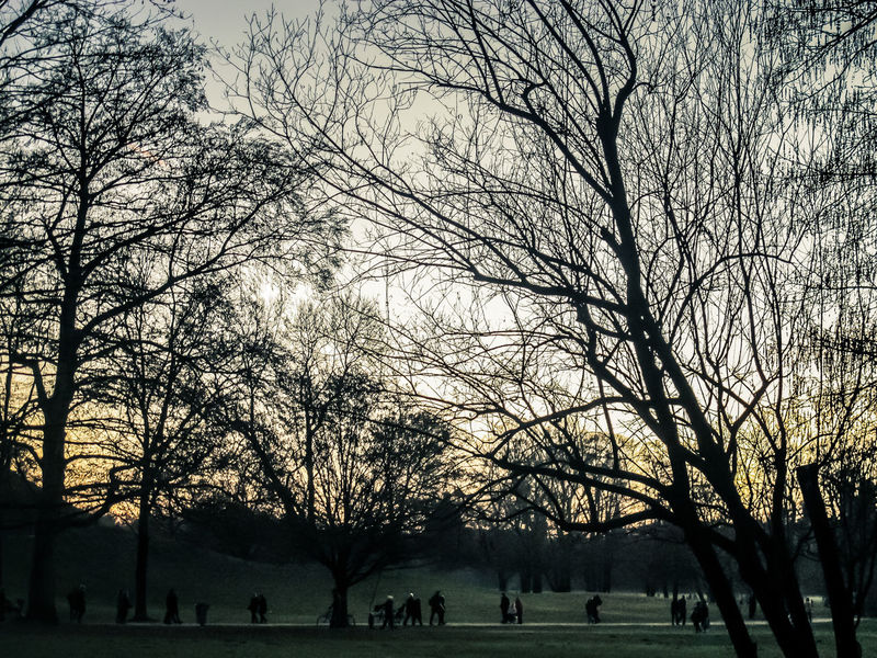 Beauty In Nature Day English Garden Style Large Group Of People München Nature Outdoors Park People Sky Sunset Tree