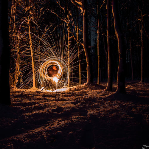 Night Tree Land Nature Illuminated Forest Motion Long Exposure Glowing Orange Color Wire Wool No People Outdoors Blurred Motion Plant Fire Tree Trunk Burning Trunk Spinning Light