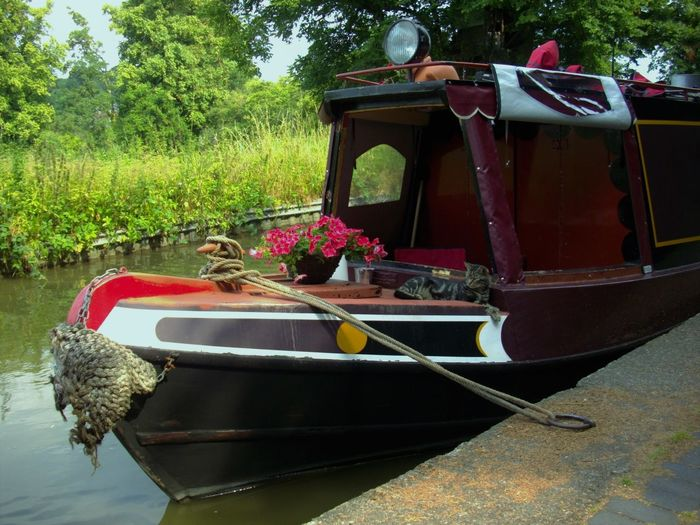 Beautiful Boat Canal Cat In The Boat England English Boat Nautical Vessel No People Outdoors Water