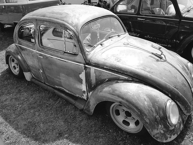 VW Käfer Käfertreffen Maikäfer Oldschool Vintage Germany Hannover Car