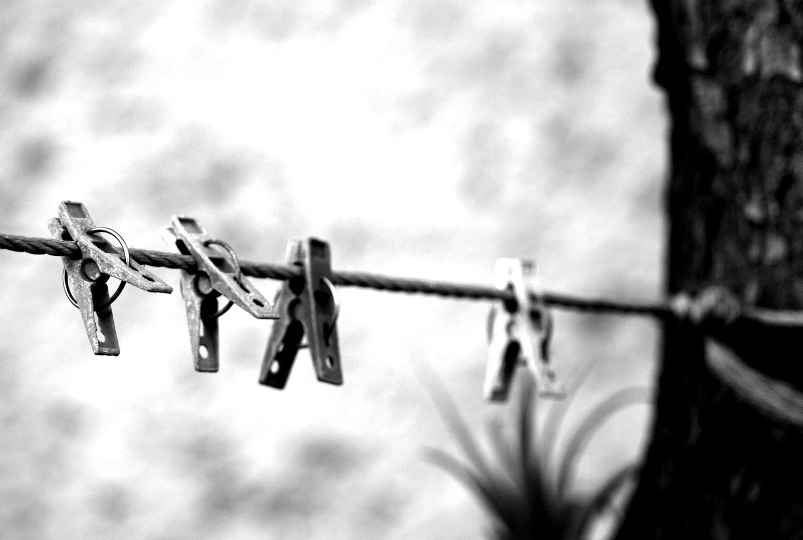 metal, close-up, sky, safety, security, protection, focus on foreground, fence, barbed wire, sharp, metallic, in a row, day, hanging, outdoors, no people, cloud - sky, selective focus, weather, low angle view