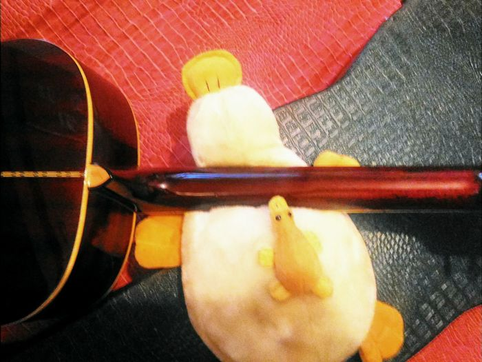 Close-up Guitar Duck Animal Music Keyboard Guitar Keyboard Ducky  Puppy Puppet Puppy Duck Baby Baby Animals Baby Duck Wings Of Mummy Duck Protecting Her Babies Objects Composition Warm Colours Yellow Red Geometry Shapes And Forms Curves & Lines Contrasts