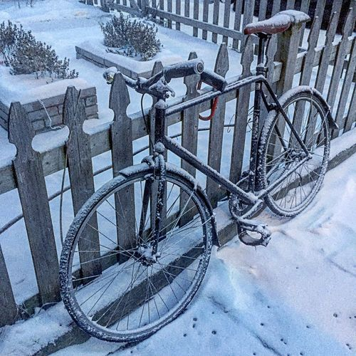 My neighbor's bike outside! Canada Toronto City Covered Winter Fence Snow Bicycle Winter Cold Temperature Outdoors High Angle View Day No People Bicycle Rack